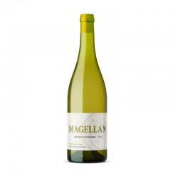 Dom.MAGELLAN blanc Aop Languedoc