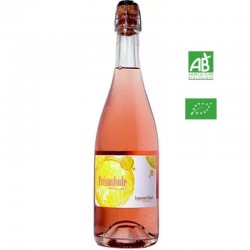 E.Haget PREAMBULE Pétillant naturel vdf rosé 75cl